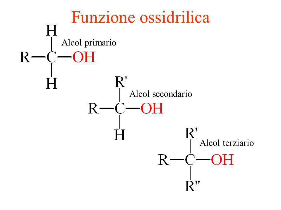 Funzione ossidrilica Alcol primario Alcol secondario Alcol terziario