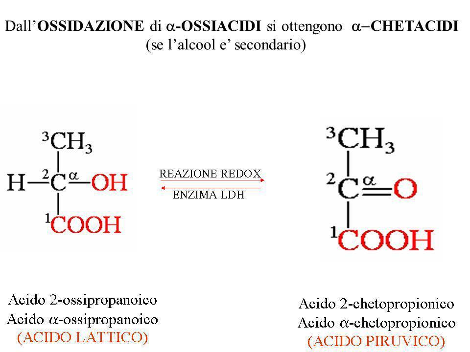 DallOSSIDAZIONE di -OSSIACIDI si ottengono CHETACIDI (se lalcool e secondario)
