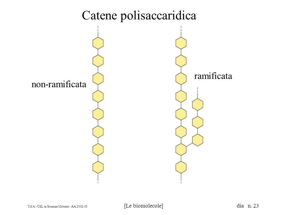 Ud A - CdL in Scienze Motorie - AA 2002-03 [Le biomolecole] dia n.