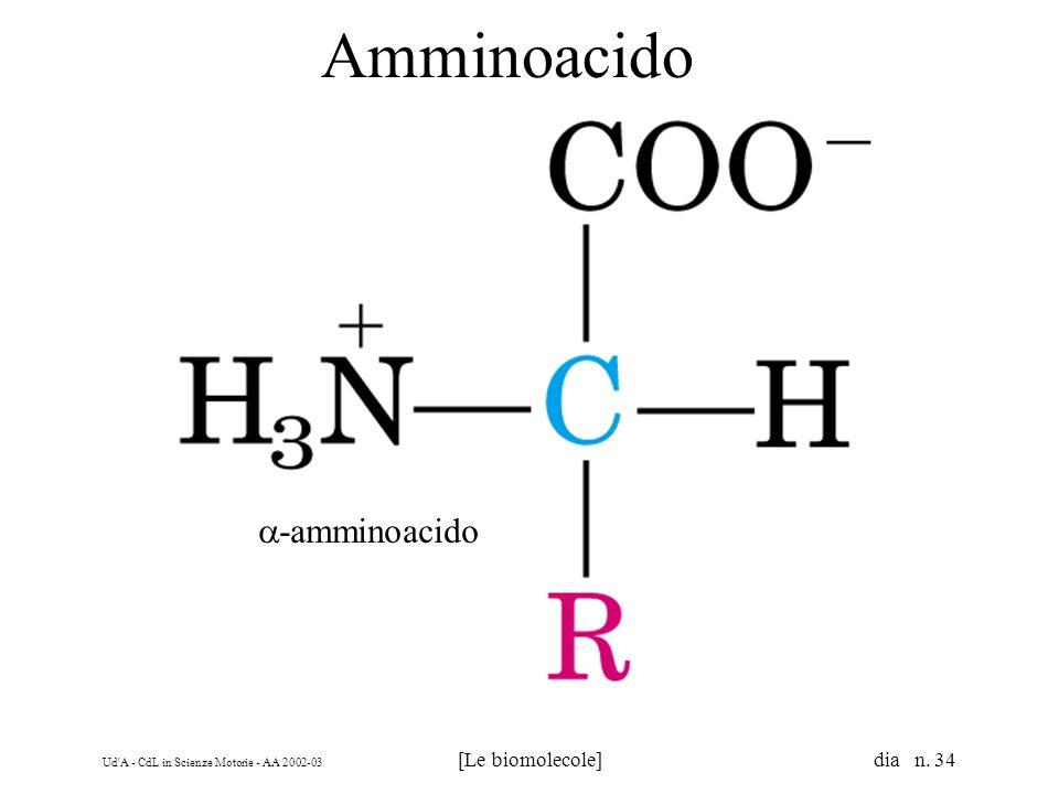 Ud A - CdL in Scienze Motorie - AA 2002-03 [Le biomolecole] dia n. 34 Amminoacido -amminoacido