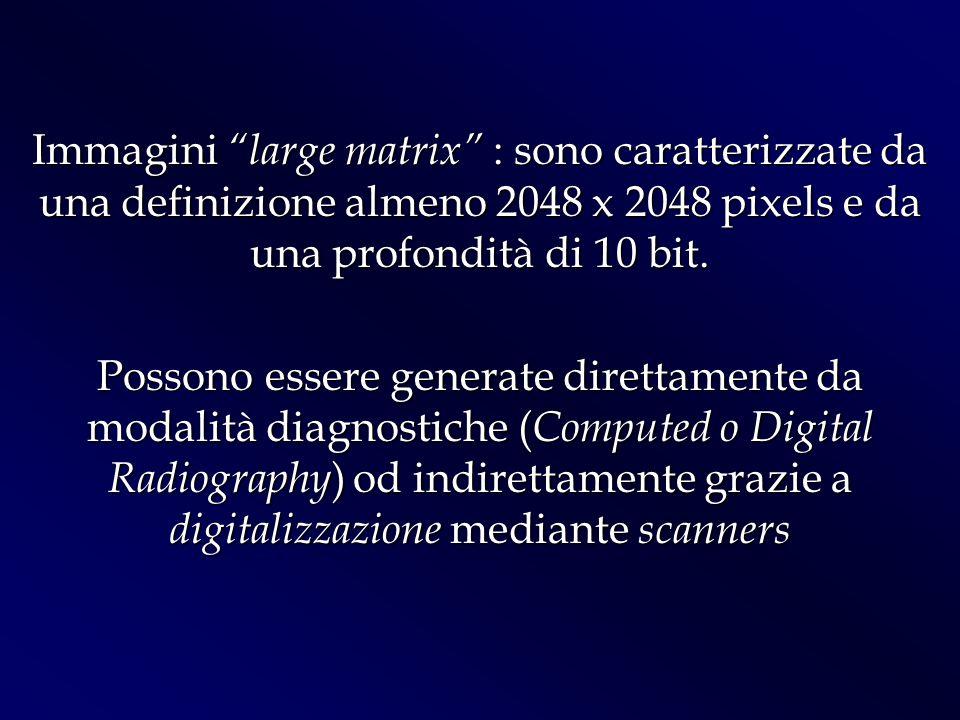 Immagini large matrix : sono caratterizzate da una definizione almeno 2048 x 2048 pixels e da una profondità di 10 bit. Possono essere generate dirett