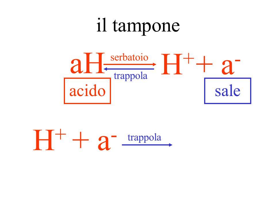 il serbatoio + a - H+H+ aH perché un acido debole? perché si dissocia quando serve