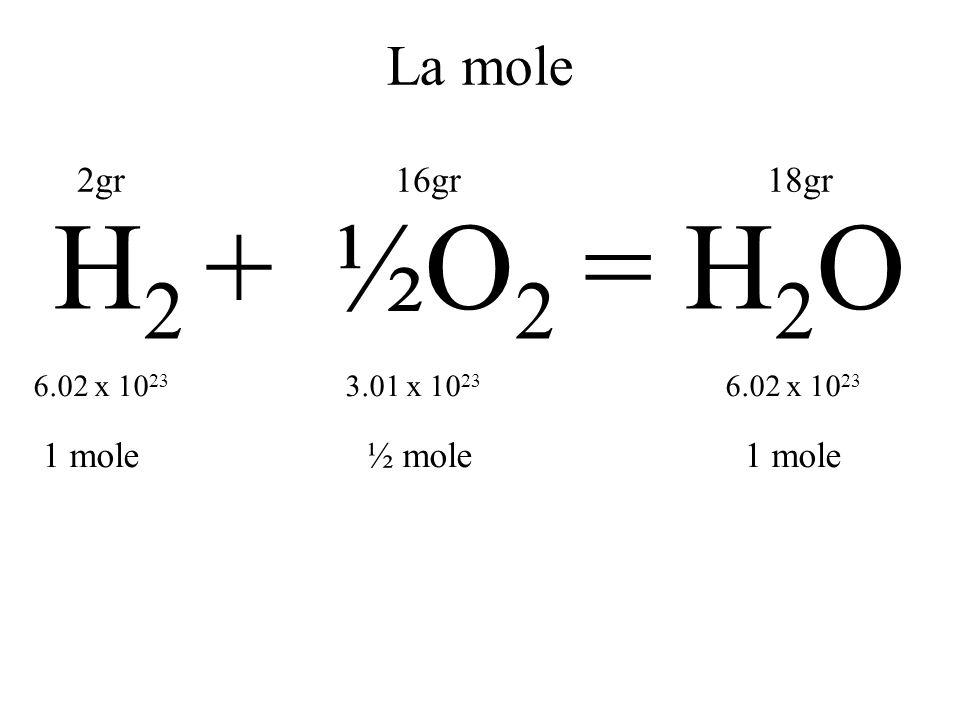 Grammomolecola* MolecolaSimbolo Peso molecolare Numero di particelle in un numero di grammi pari al PM IdrogenoH2H2 26.02 x 10 23 OssigenoO2O2 326.02