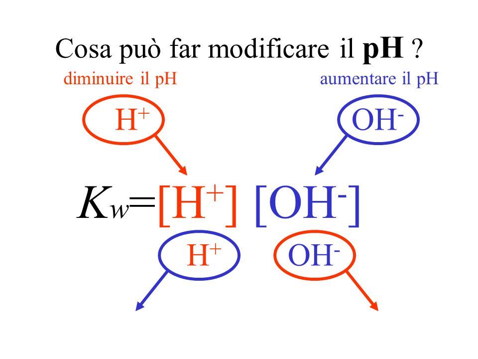 Domande Cosa può far modificare il pH di una soluzione ? Come si calcola il pH di una soluzione ?