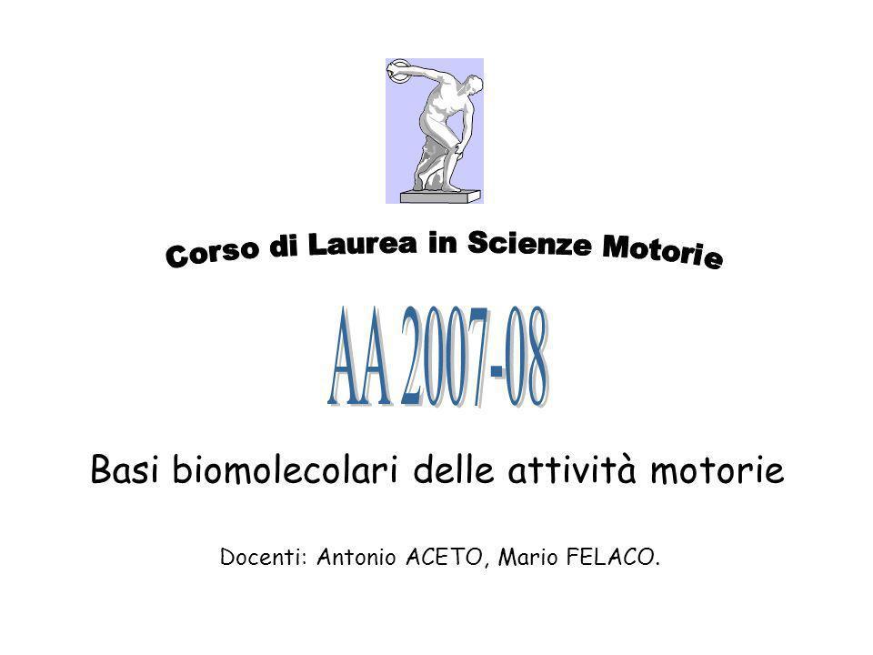 Basi biomolecolari delle attività motorie Docenti: Antonio ACETO, Mario FELACO.