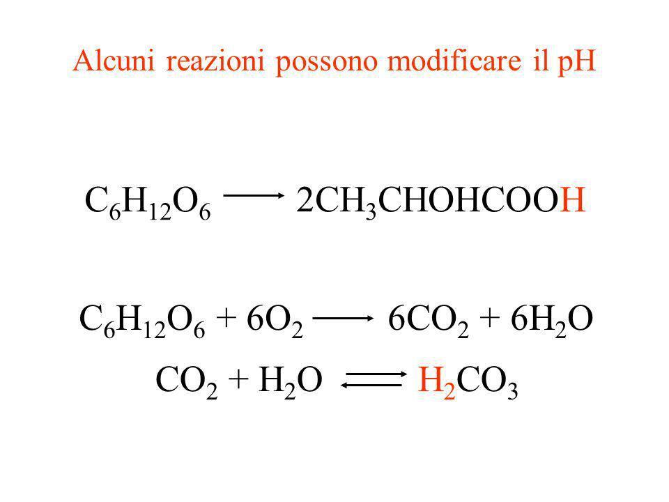 Attività enzimatica e pH Pepsina Papaina Colinesterasi Tripsina 246810 pH Attività relativa
