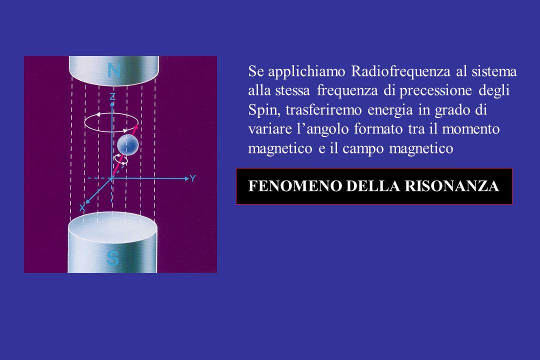 Se applichiamo Radiofrequenza al sistema alla stessa frequenza di precessione degli Spin, trasferiremo energia in grado di variare langolo formato tra