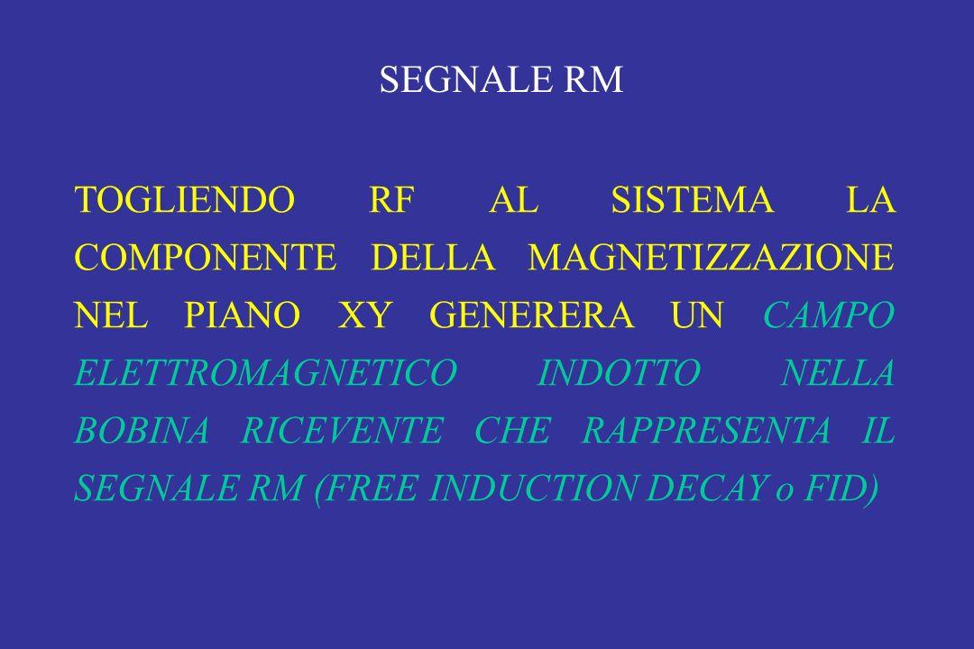 TOGLIENDO RF AL SISTEMA LA COMPONENTE DELLA MAGNETIZZAZIONE NEL PIANO XY GENERERA UN CAMPO ELETTROMAGNETICO INDOTTO NELLA BOBINA RICEVENTE CHE RAPPRES
