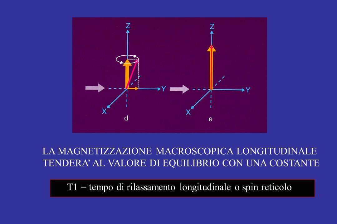 LA MAGNETIZZAZIONE MACROSCOPICA LONGITUDINALE TENDERA AL VALORE DI EQUILIBRIO CON UNA COSTANTE T1 = tempo di rilassamento longitudinale o spin reticol