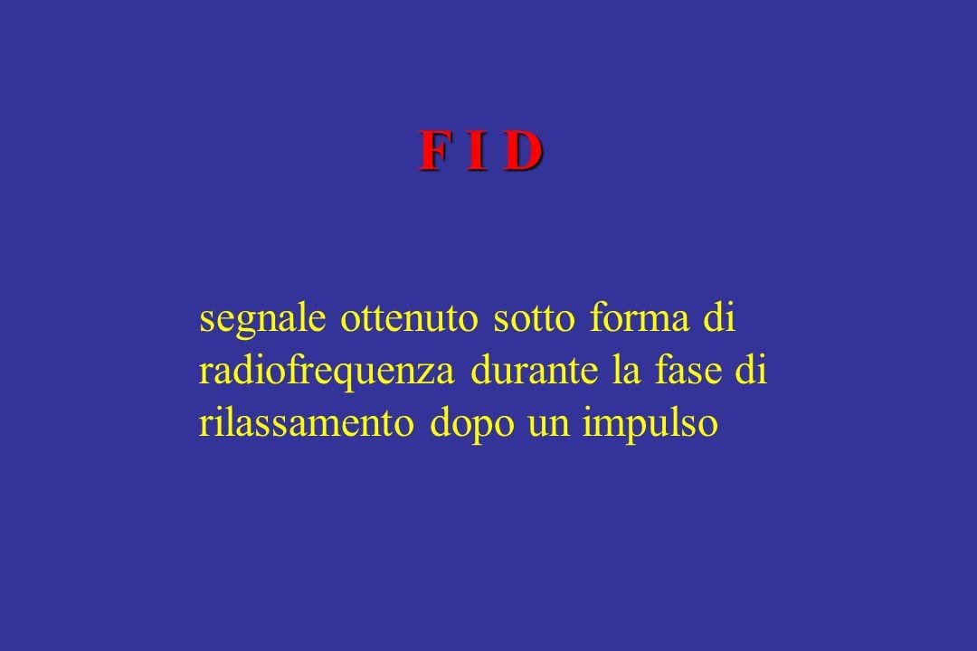 F I D segnale ottenuto sotto forma di radiofrequenza durante la fase di rilassamento dopo un impulso