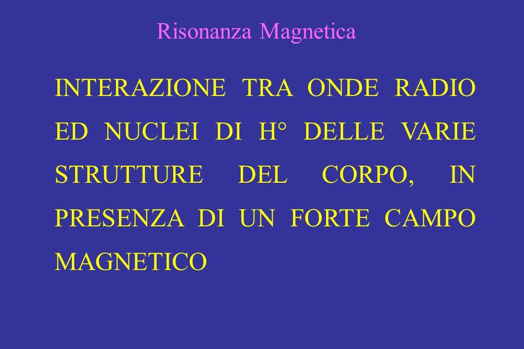 INTERAZIONE TRA ONDE RADIO ED NUCLEI DI H° DELLE VARIE STRUTTURE DEL CORPO, IN PRESENZA DI UN FORTE CAMPO MAGNETICO Risonanza Magnetica