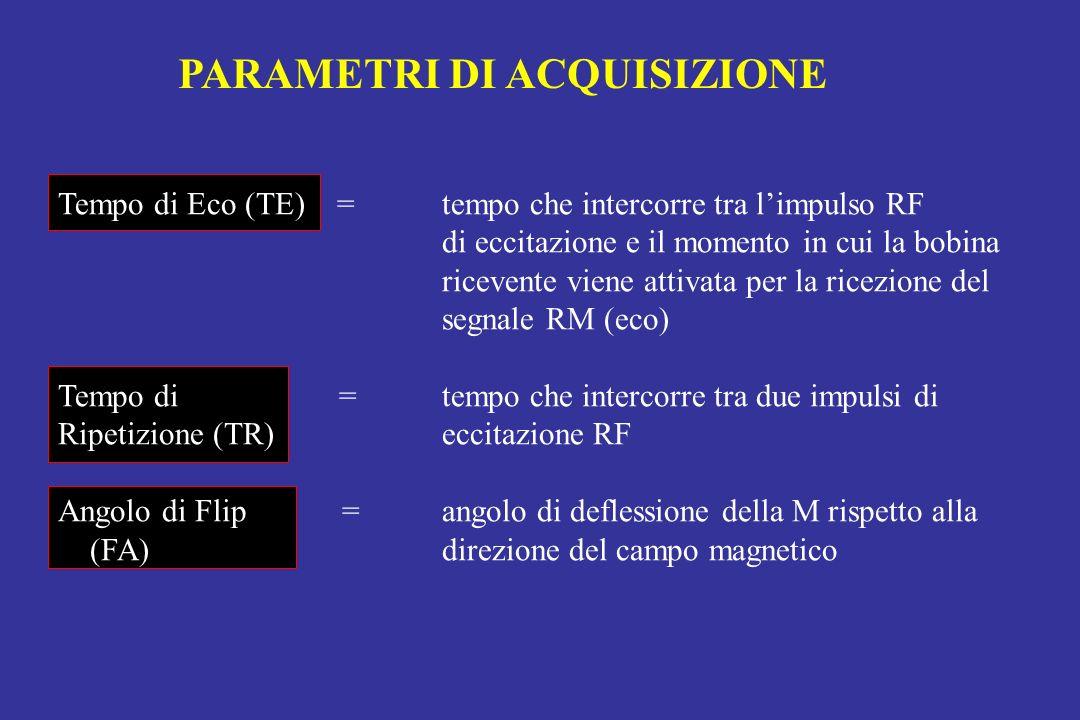 Tempo di Eco (TE) = tempo che intercorre tra limpulso RF di eccitazione e il momento in cui la bobina ricevente viene attivata per la ricezione del se