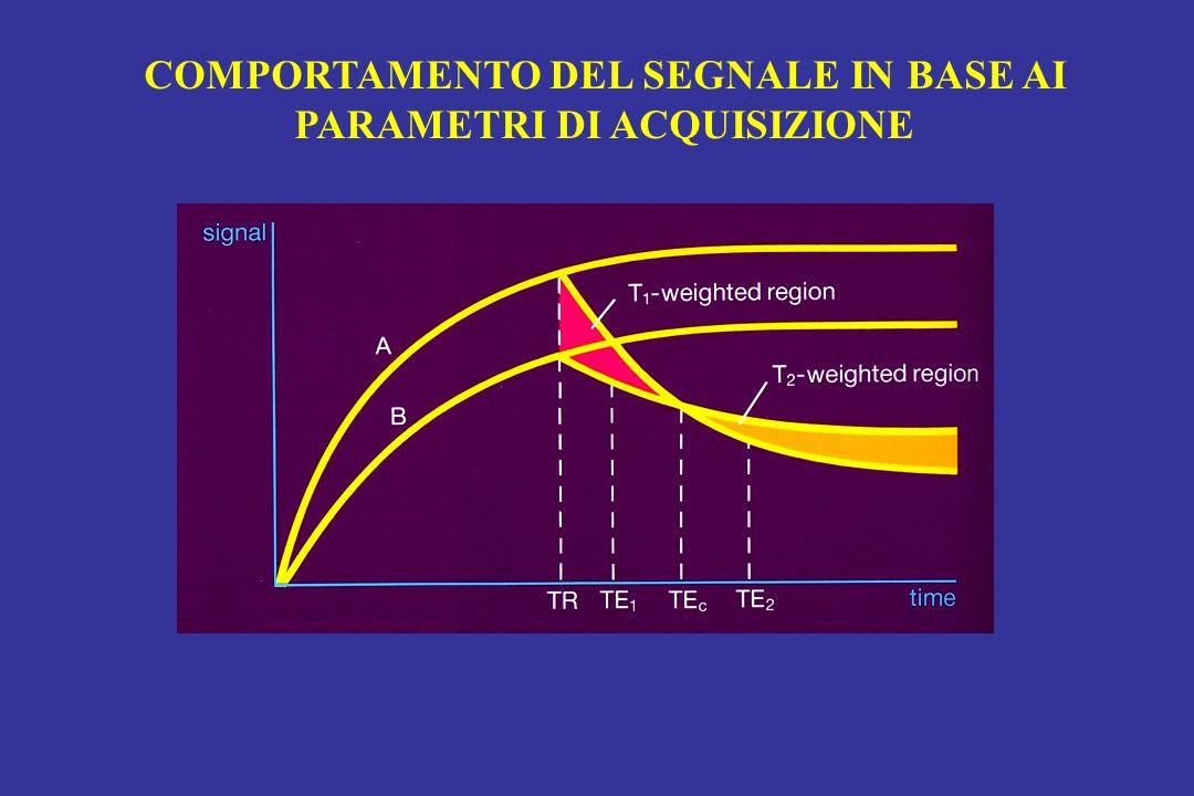 COMPORTAMENTO DEL SEGNALE IN BASE AI PARAMETRI DI ACQUISIZIONE