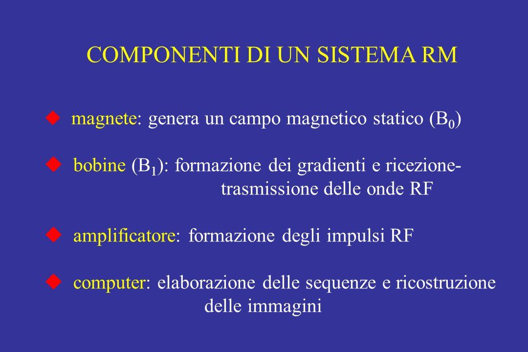 COMPONENTI DI UN SISTEMA RM magnete: genera un campo magnetico statico (B 0 ) bobine (B 1 ): formazione dei gradienti e ricezione- trasmissione delle