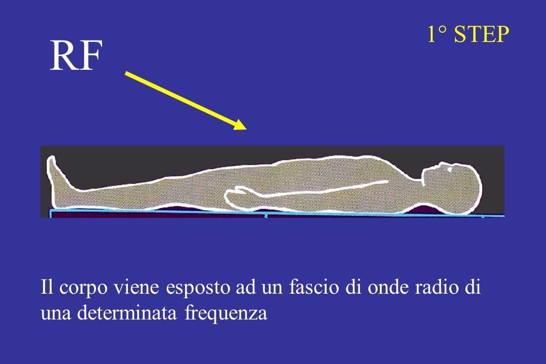1° STEP RF Il corpo viene esposto ad un fascio di onde radio di una determinata frequenza