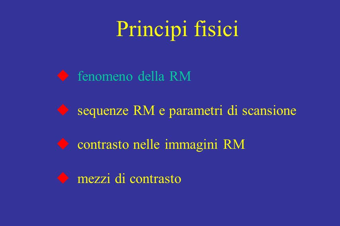 Principi fisici fenomeno della RM sequenze RM e parametri di scansione contrasto nelle immagini RM mezzi di contrasto