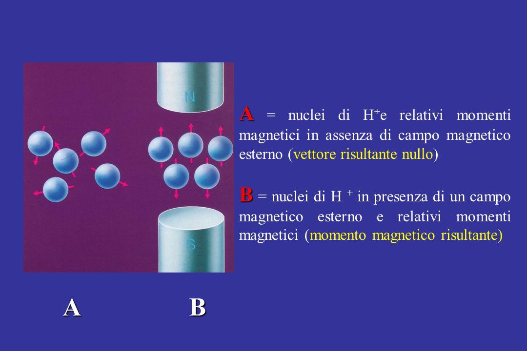 A B A A = nuclei di H + e relativi momenti magnetici in assenza di campo magnetico esterno (vettore risultante nullo) B B = nuclei di H + in presenza