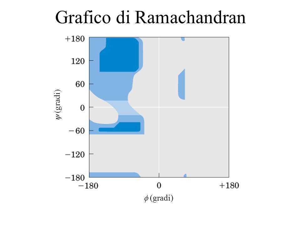 Grafico di Ramachandran (gradi)
