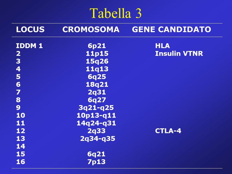 Tabella 3 LOCUSCROMOSOMAGENE CANDIDATO IDDM 1 6p21HLA 2 11p15Insulin VTNR 3 15q26 4 11q13 5 6q25 6 18q21 7 2q31 8 6q27 9 3q21-q25 10 10p13-q11 11 14q24-q31 12 2q33CTLA-4 13 2q34-q35 14 15 6q21 16 7p13