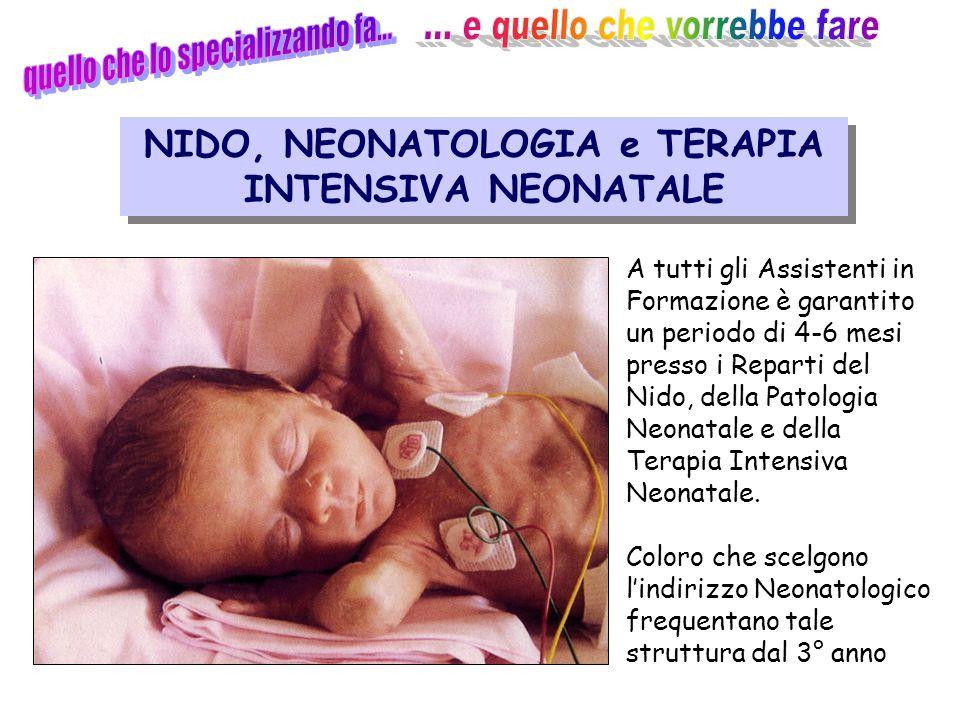 Attività clinica NIDO, NEONATOLOGIA e TERAPIA INTENSIVA NEONATALE A tutti gli Assistenti in Formazione è garantito un periodo di 4-6 mesi presso i Reparti del Nido, della Patologia Neonatale e della Terapia Intensiva Neonatale.