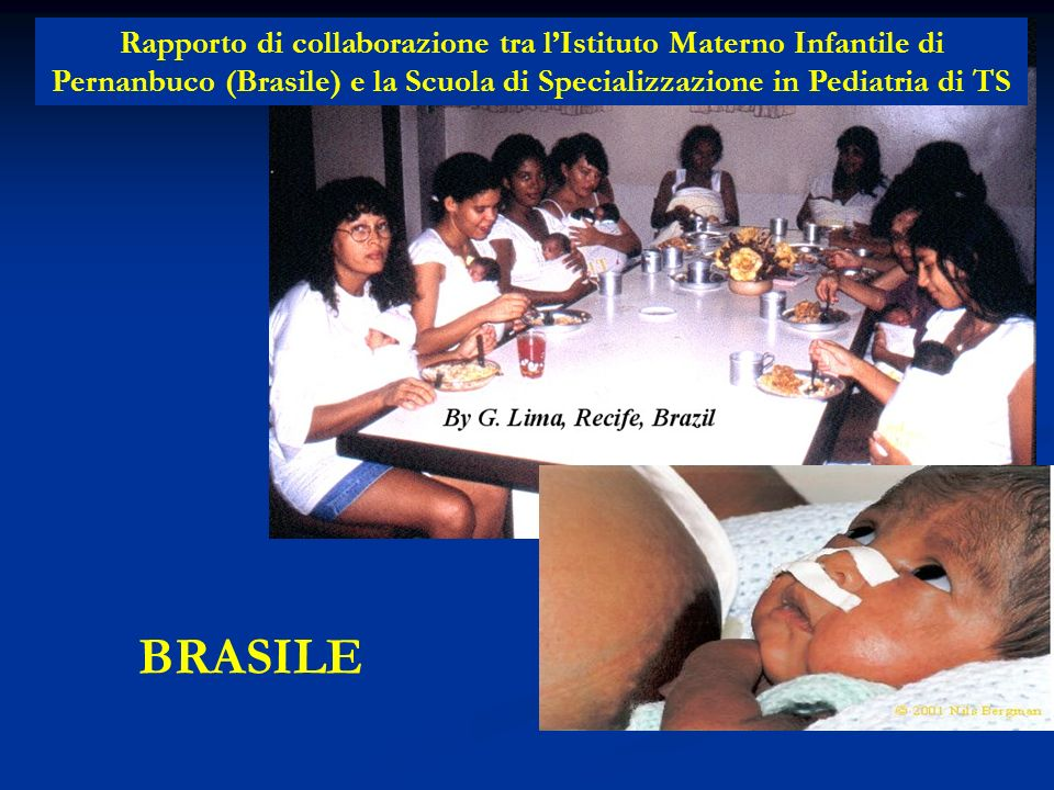 BRASILE Rapporto di collaborazione tra lIstituto Materno Infantile di Pernanbuco (Brasile) e la Scuola di Specializzazione in Pediatria di TS