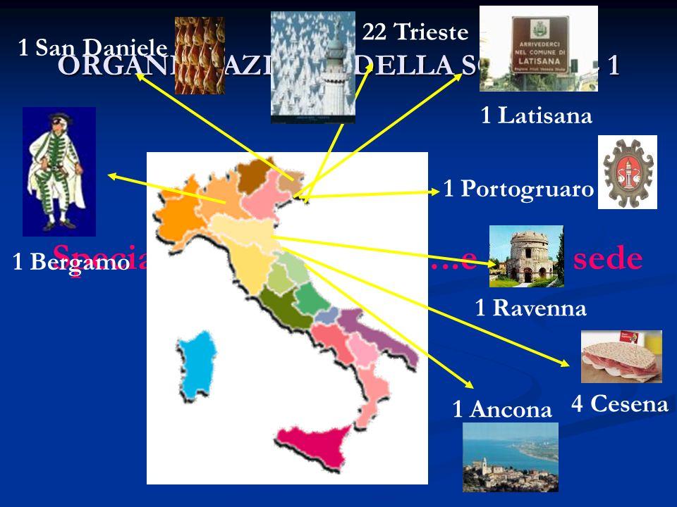 ORGANIZZAZIONE DELLA SCUOLA - 1 Specializzandi in sede…..e fuori sede 1 Bergamo 4 Cesena 1 San Daniele 1 Ancona 22 Trieste 1 Latisana 1 Ravenna 1 Port