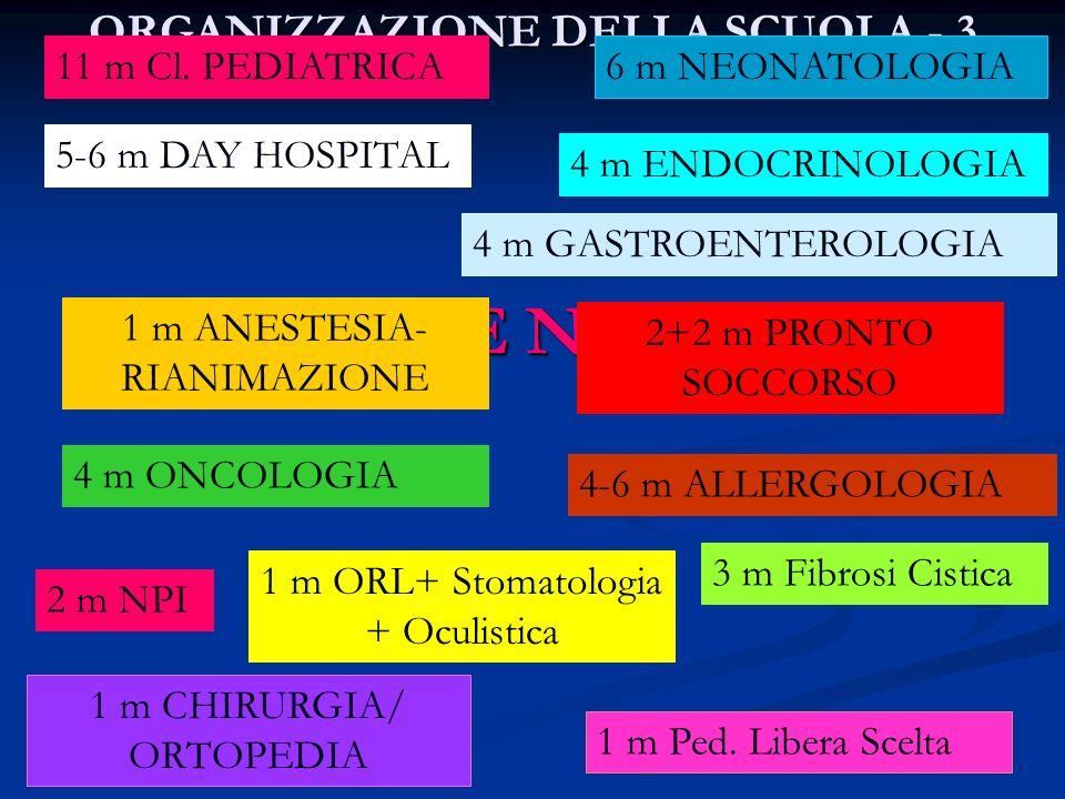 ORGANIZZAZIONE DELLA SCUOLA - 3 ROTAZIONE NEI REPARTI 11 m Cl. PEDIATRICA 4 m GASTROENTEROLOGIA 1 m ANESTESIA- RIANIMAZIONE 2+2 m PRONTO SOCCORSO 5-6