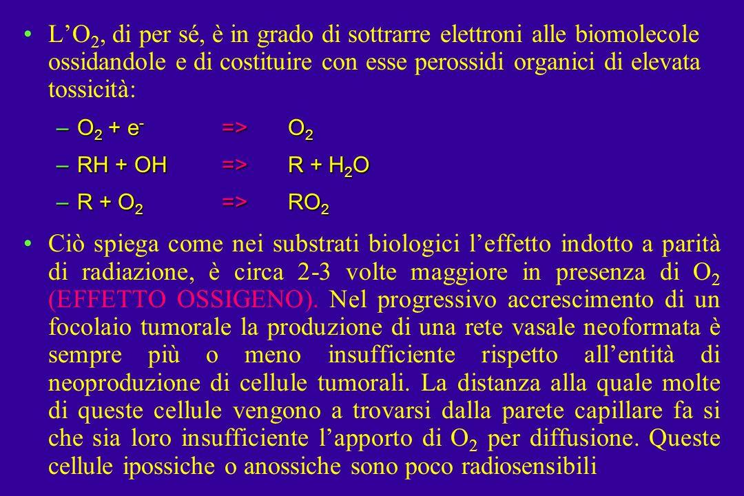 LO 2, di per sé, è in grado di sottrarre elettroni alle biomolecole ossidandole e di costituire con esse perossidi organici di elevata tossicità: –O 2 + e - =>O 2 –RH + OH=>R + H 2 O –R + O 2 =>RO 2 Ciò spiega come nei substrati biologici leffetto indotto a parità di radiazione, è circa 2-3 volte maggiore in presenza di O 2 (EFFETTO OSSIGENO).