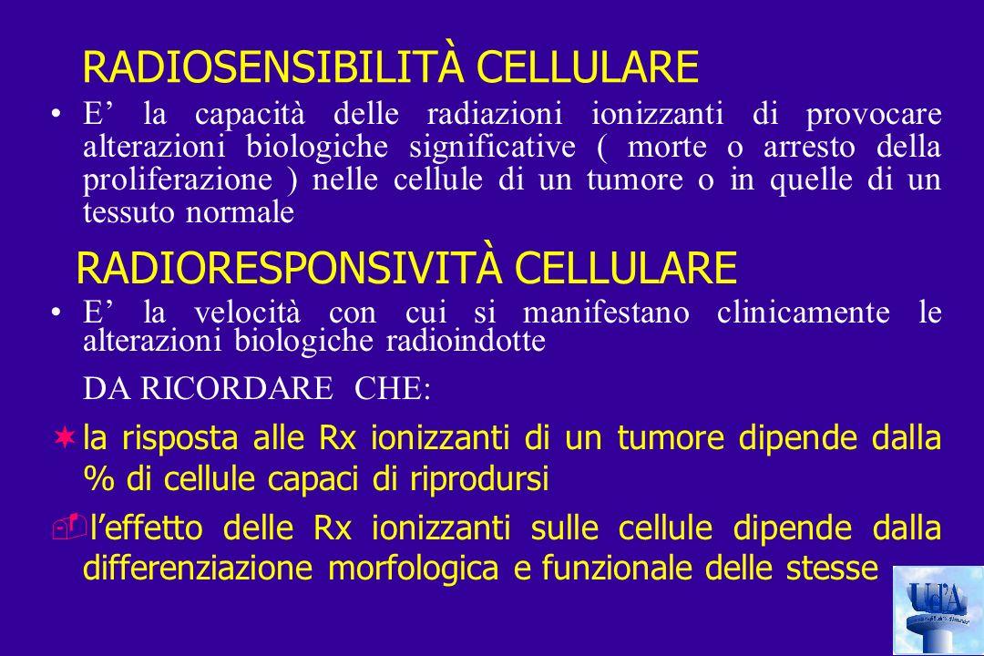 RADIOSENSIBILITÀ CELLULARE E la capacità delle radiazioni ionizzanti di provocare alterazioni biologiche significative ( morte o arresto della proliferazione ) nelle cellule di un tumore o in quelle di un tessuto normale RADIORESPONSIVITÀ CELLULARE E la velocità con cui si manifestano clinicamente le alterazioni biologiche radioindotte DA RICORDARE CHE: ¬la risposta alle Rx ionizzanti di un tumore dipende dalla % di cellule capaci di riprodursi leffetto delle Rx ionizzanti sulle cellule dipende dalla differenziazione morfologica e funzionale delle stesse