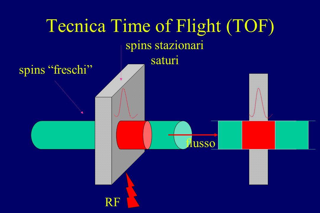spins freschi spins stazionari saturi flusso RF