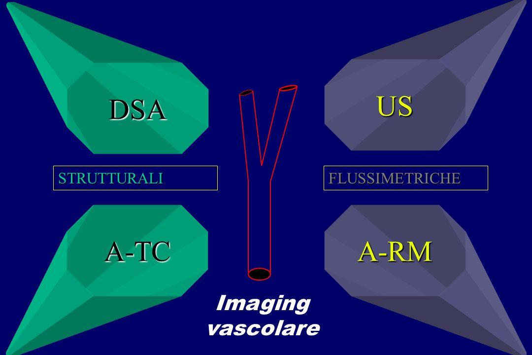 DSA US A-TCA-RM Imaging vascolare STRUTTURALIFLUSSIMETRICHE