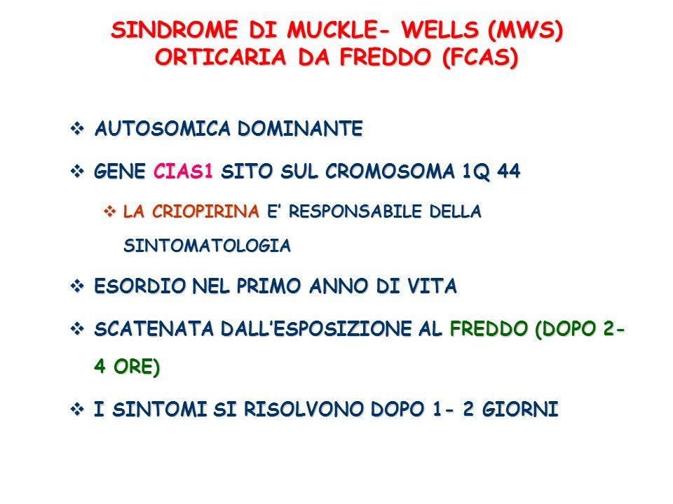 SINDROME DI MUCKLE- WELLS (MWS) ORTICARIA DA FREDDO (FCAS) AUTOSOMICA DOMINANTE AUTOSOMICA DOMINANTE GENE CIAS1 SITO SUL CROMOSOMA 1Q 44 GENE CIAS1 SI