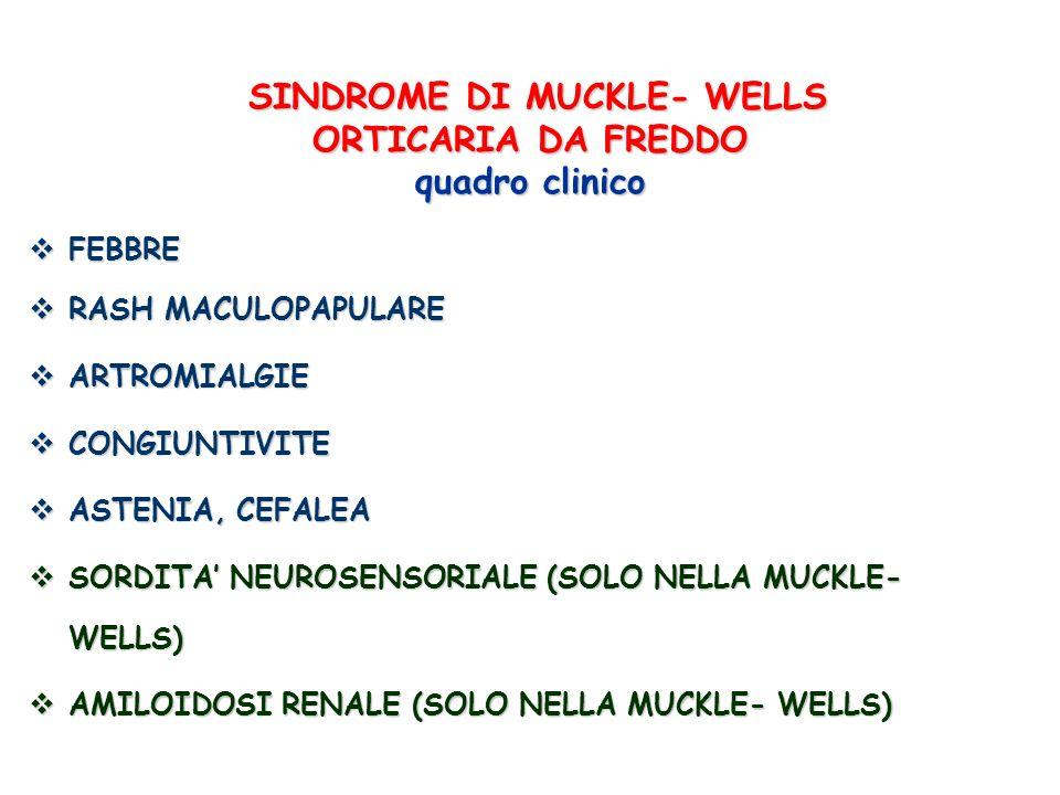 SINDROME DI MUCKLE- WELLS ORTICARIA DA FREDDO quadro clinico SINDROME DI MUCKLE- WELLS ORTICARIA DA FREDDO quadro clinico FEBBRE FEBBRE RASH MACULOPAP