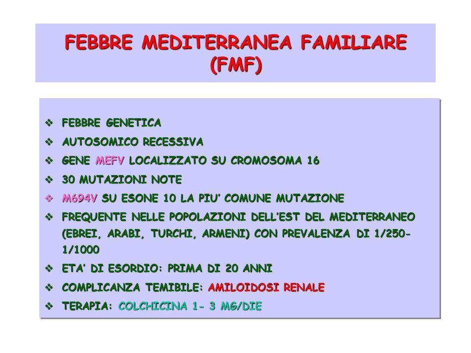 FEBBRE MEDITERRANEA FAMILIARE (FMF) quadro clinico FEBBRE ELEVATA FEBBRE ELEVATA INTENSO DOLORE ADDOMINALE (95%) INTENSO DOLORE ADDOMINALE (95%) DOLORE TORACICO (15- 60%) DOLORE TORACICO (15- 60%) ARTRITE (50%) ARTRITE (50%) TUMEFAZIONE SCROTALE (15%) TUMEFAZIONE SCROTALE (15%) PERICARDITE (1%) PERICARDITE (1%) LESIONI SIMIL-ERISIPELOIDI (PIEDE) (7- 40%) LESIONI SIMIL-ERISIPELOIDI (PIEDE) (7- 40%) VASCULITE VASCULITE DURATA MEDIA: 1- 3 GIORNI DURATA MEDIA: 1- 3 GIORNI RICORRENZA: OGNI 7- 30 GIORNI RICORRENZA: OGNI 7- 30 GIORNI