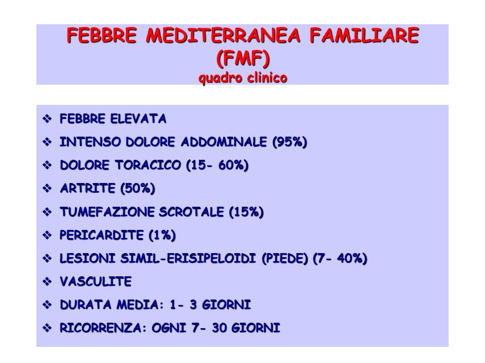 FEBBRE MEDITERRANEA FAMILIARE (FMF) quadro clinico FEBBRE ELEVATA FEBBRE ELEVATA INTENSO DOLORE ADDOMINALE (95%) INTENSO DOLORE ADDOMINALE (95%) DOLOR