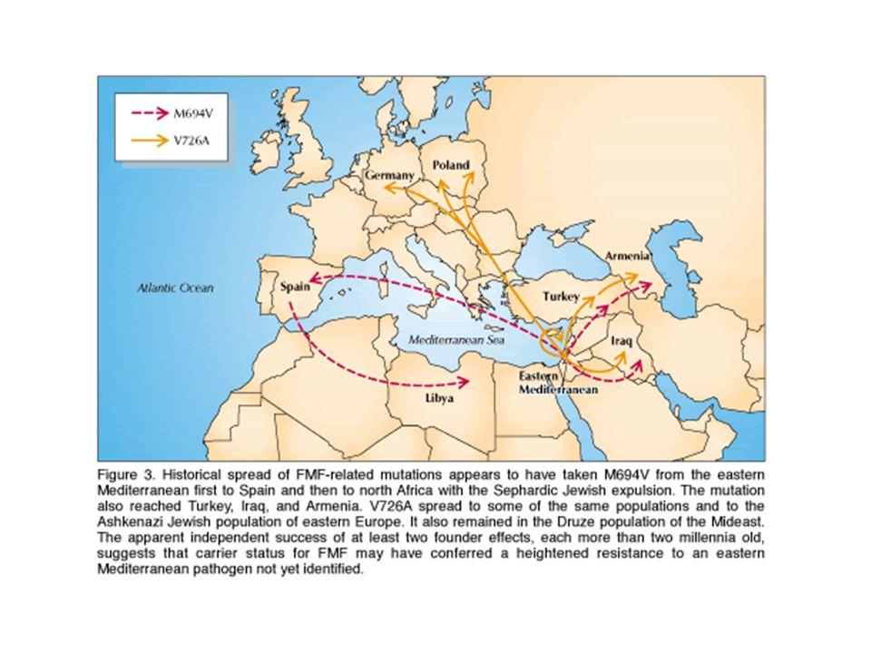 SINDROME PFAPA (periodic fever aphthous stomatitis, pharingitis, cervical adenitis) SINDROME PFAPA (periodic fever aphthous stomatitis, pharingitis, cervical adenitis) DESCRITTA NEL 1987 DESCRITTA NEL 1987 NON SI CONOSCE ALCUN GENE RESPONSABILE NON SI CONOSCE ALCUN GENE RESPONSABILE ESORDISCE PRIMA DEI 5 ANNI DI ETA ESORDISCE PRIMA DEI 5 ANNI DI ETA NORMALE CRESCITA NORMALE CRESCITA GLI EPISODI FEBBRILI DURANO DA 3 A 6 GIORNI GLI EPISODI FEBBRILI DURANO DA 3 A 6 GIORNI RICORRONO OGNI 3- 6 SETTIMANE CON REGOLARITA RICORRONO OGNI 3- 6 SETTIMANE CON REGOLARITA