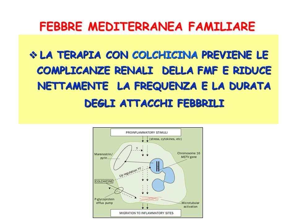 SINDROME PFAPA quadro clinico- laboratoristico SINDROME PFAPA quadro clinico- laboratoristico FEBBRE ELEVATA (39- 41°C) FEBBRE ELEVATA (39- 41°C) STOMATITE AFTOSA (67%) STOMATITE AFTOSA (67%) FARINGITE (65%) FARINGITE (65%) ADENOPATIA LATEROCERVICALE (77%) ADENOPATIA LATEROCERVICALE (77%) SEGNI PRODROMICI: MALESSERE, CEFALEA, IRRITABILITA SEGNI PRODROMICI: MALESSERE, CEFALEA, IRRITABILITA SINTOMI DI ACCOMPAGNAMENTO: CEFALEA, NAUSEA, DOLORI SINTOMI DI ACCOMPAGNAMENTO: CEFALEA, NAUSEA, DOLORI ADDOMINALI, DIARREA, TOSSE, ESANTEMA, ARTRALGIE ADDOMINALI, DIARREA, TOSSE, ESANTEMA, ARTRALGIE LABORATORIO: INCREMENTO DEGLI INDICI DI FLOGOSI DURANTE LEPISODIO FEBBRILE LEPISODIO FEBBRILE