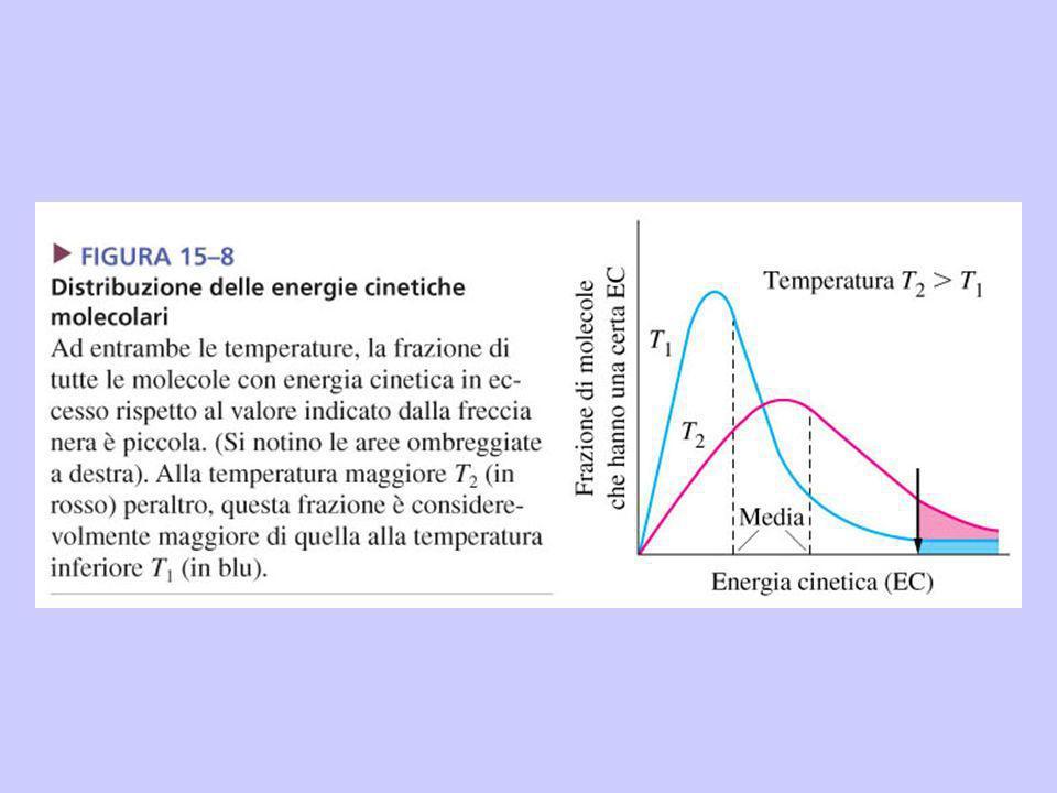 Ad esempio per la reazione tra NO e Cl 2, per la quale E a =81 kJ·mol -1, un aumento di temperatura da 25°C a 35°C comporta un aumento di f da 1,2·10 -15 a 3,8 ·10 -15 cioè di circa un fattore 3.