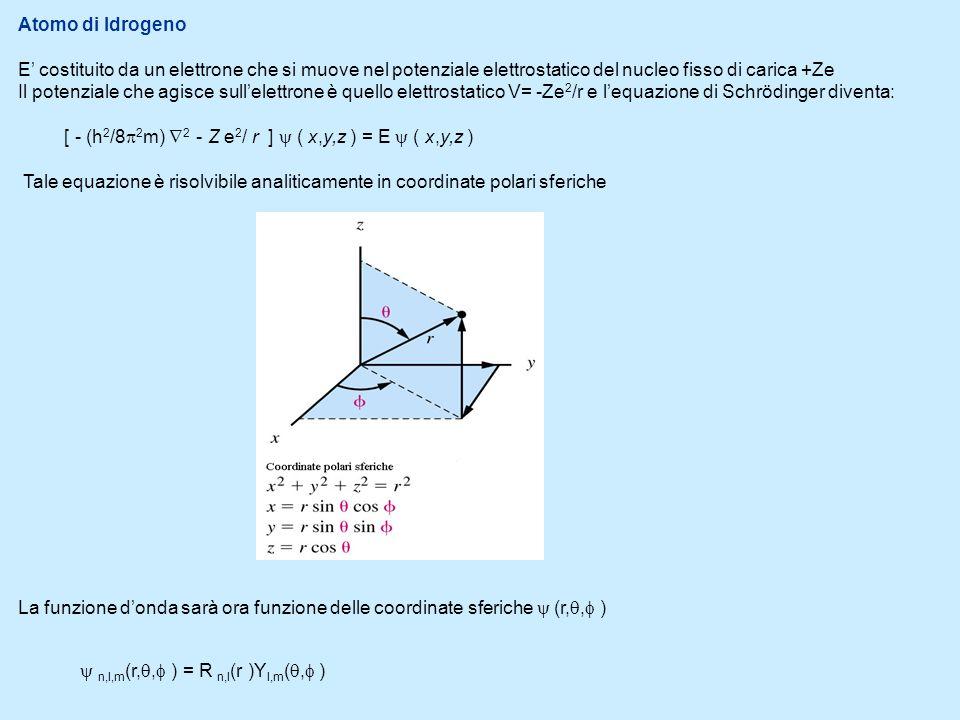 Le soluzioni sono infinite e dipendono dai numeri quantici n,l,m che sono semplicemente numeri interi o relativi che derivano dalla soluzione matematica dellequazione di Scrödinger e classificano le possibili soluzioni.