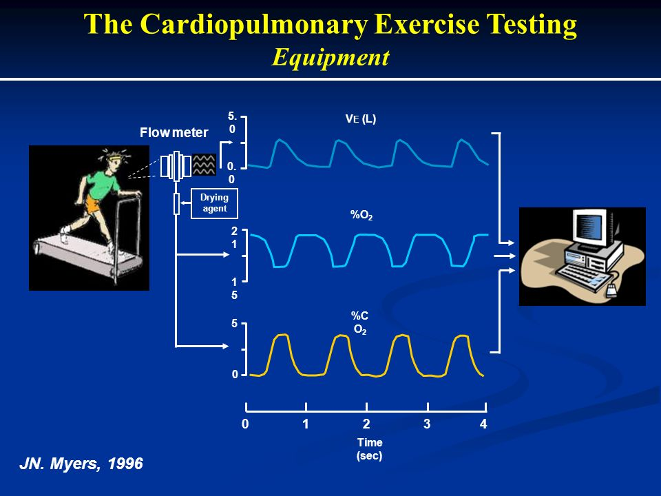 JN. Myers, 1996 The Cardiopulmonary Exercise Testing Equipment 01234 0 5 1515 2121 0. 0 5. 0 %C O 2 %O 2 V E (L) Flow meter Drying agent Time (sec)
