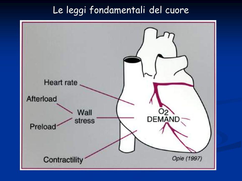 Le leggi fondamentali del cuore