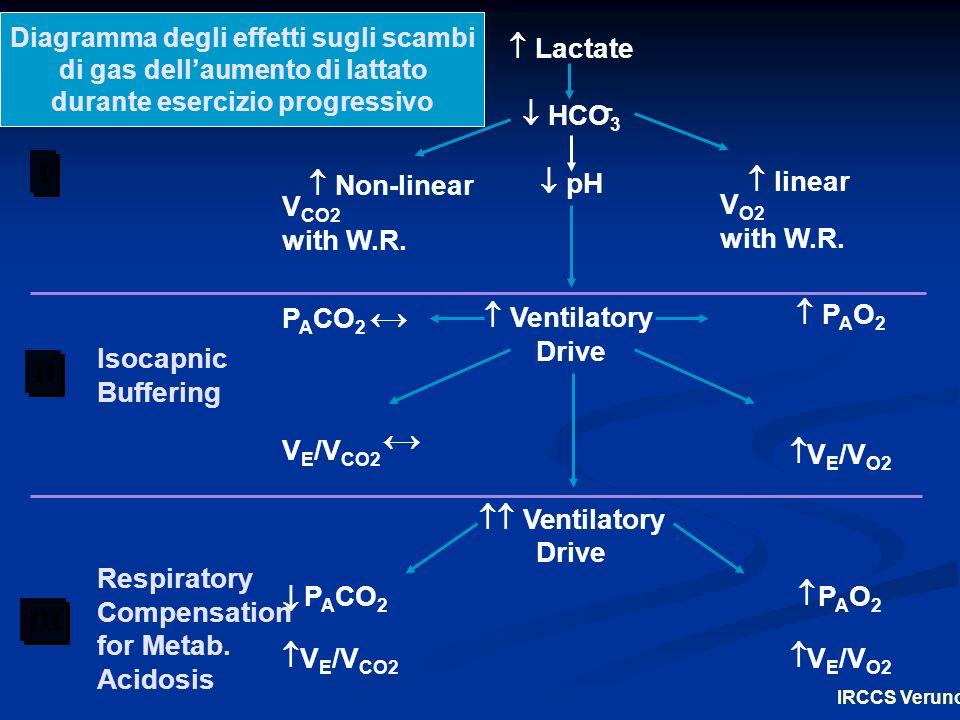 Lactate HCO 3 pH Ventilatory Drive Ventilatory Drive Non-linear V CO2 with W.R.