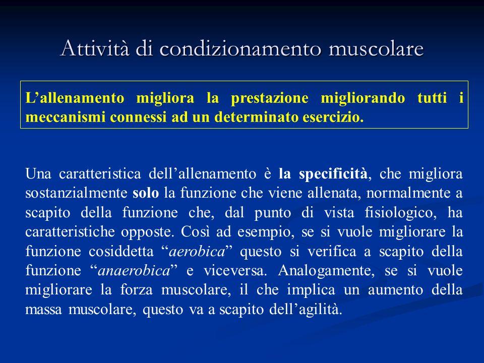 Attività di condizionamento muscolare Lallenamento migliora la prestazione migliorando tutti i meccanismi connessi ad un determinato esercizio.