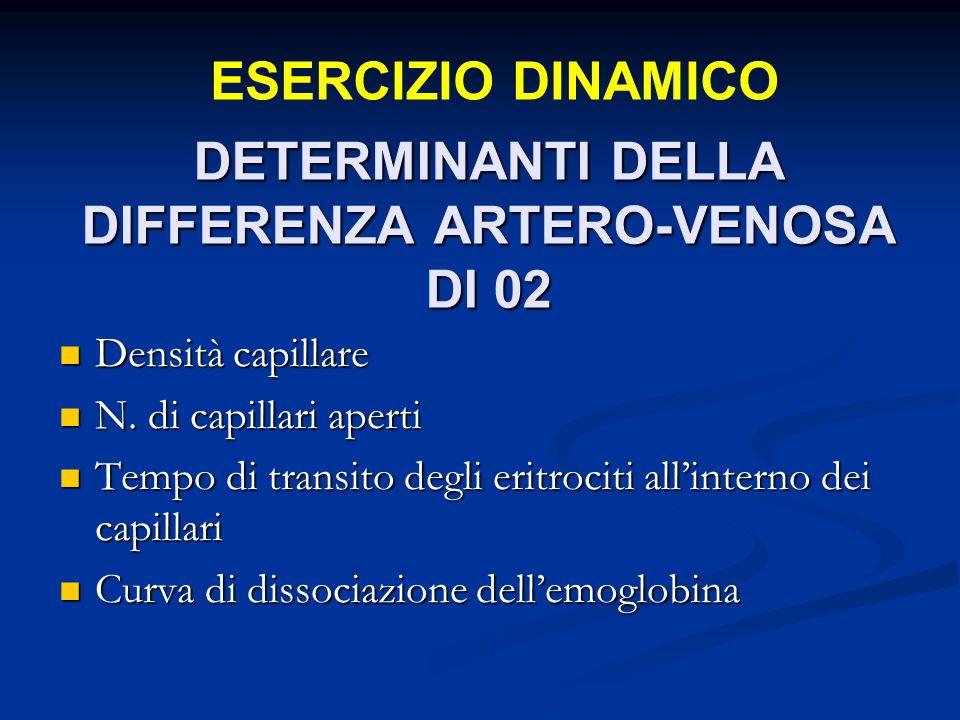 DETERMINANTI DELLA DIFFERENZA ARTERO-VENOSA DI 02 Densità capillare Densità capillare N.