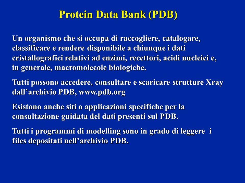 Protein Data Bank (PDB) Un organismo che si occupa di raccogliere, catalogare, classificare e rendere disponibile a chiunque i dati cristallografici r