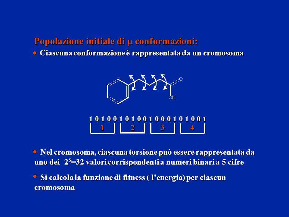 Popolazione initiale di conformazioni: Ciascuna conformazione è rappresentata da un cromosoma 10101101000101001000 1234 Si calcola la funzione di fitn