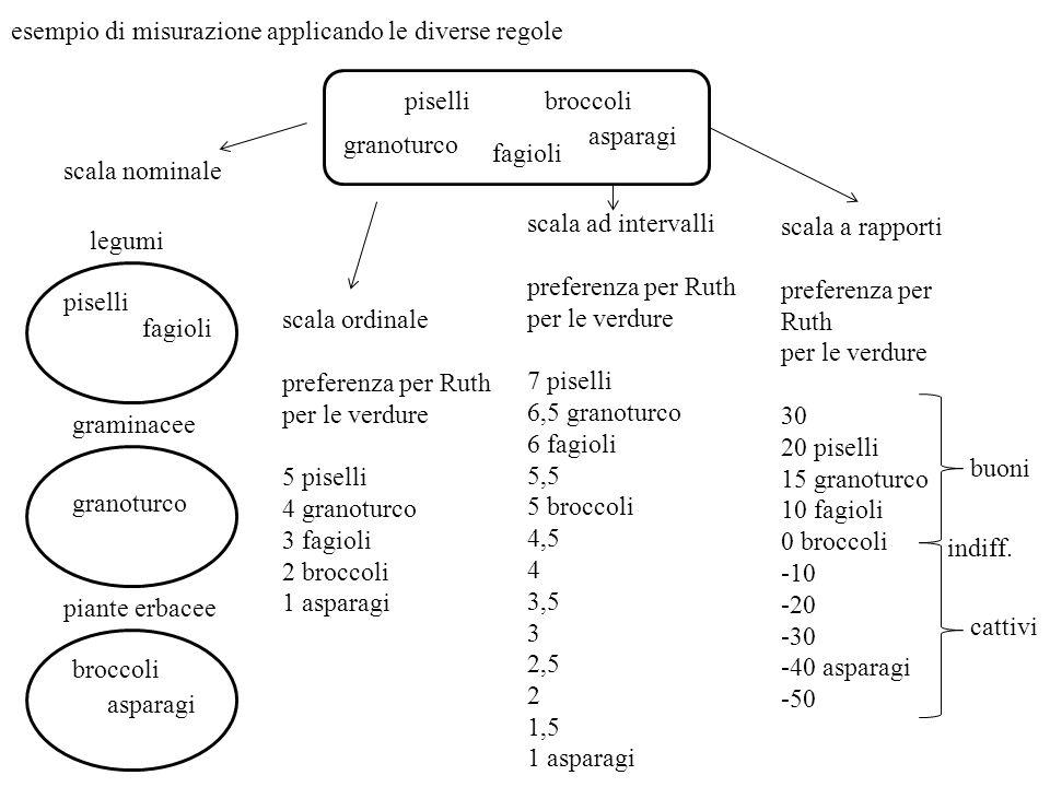 esempio di misurazione applicando le diverse regole piselli granoturco fagioli broccoli asparagi legumi graminacee piante erbacee piselli fagioli gran