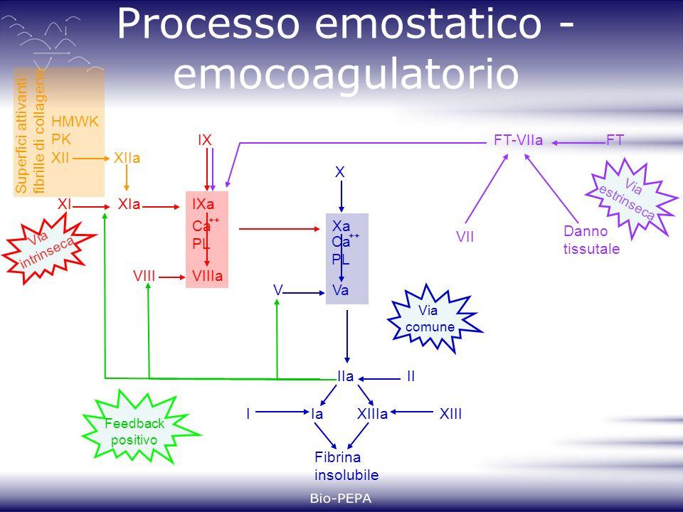 Processo emostatico - emocoagulatorio HMWK PK XII S u p e r f i c i a t t i v a n t i : f i b r i l l e d i c o l l a g e n e XIIa XIXIa IX IXa Ca PL ++ VIIIVIIIa X Xa Ca PL ++ VVa IIIIa XIIIIIaXIIIa Fibrina insolubile FT Danno tissutale FT-VIIa VII Via intrinseca Via estrinseca Via comune Feedback positivo