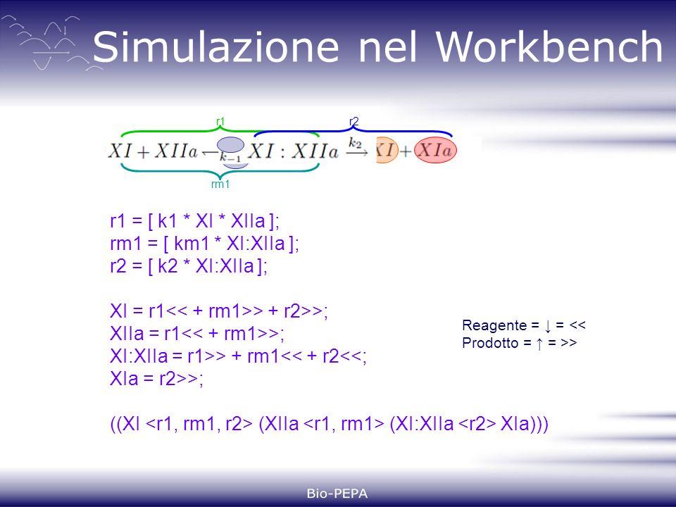 Simulazione nel Workbench r1 = [ k1 * XI * XIIa ]; rm1 = [ km1 * XI:XIIa ]; r2 = [ k2 * XI:XIIa ]; XI = r1 > + r2>>; XIIa = r1 >; XI:XIIa = r1>> + rm1<< + r2<<; XIa = r2>>; ((XI (XIIa (XI:XIIa XIa))) Reagente = = << Prodotto = = >> r1 rm1 r2