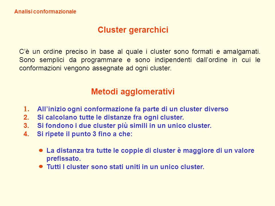 Analisi conformazionale Cluster gerarchici Cè un ordine preciso in base al quale i cluster sono formati e amalgamati. Sono semplici da programmare e s